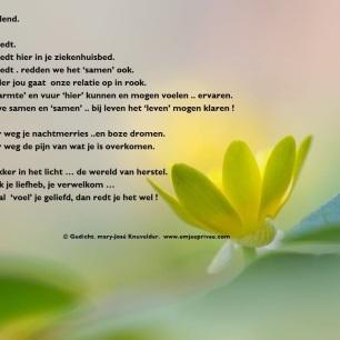 gedicht als jij het redt 5-11-17
