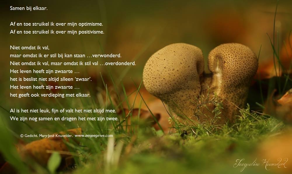 Gedicht Samen Bij Elkaar Emjeeprivee