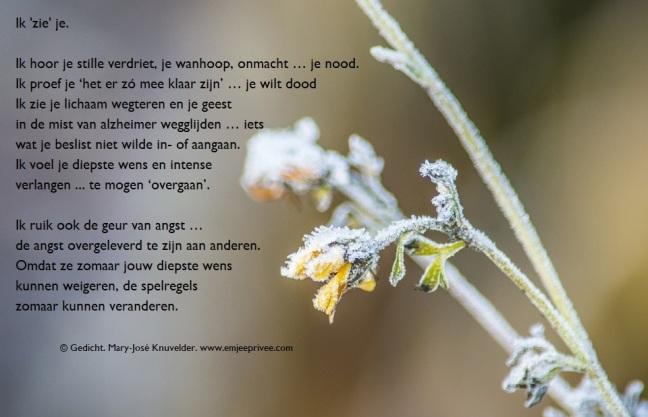 Hedendaags Alzheimer & Dementie – Pagina 2 – EmJeePrivee XC-91