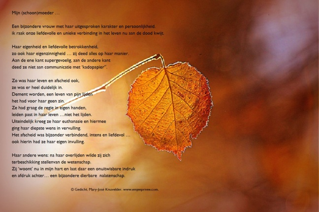 Gedicht Mijn Schoonmoeder Emjeeprivee