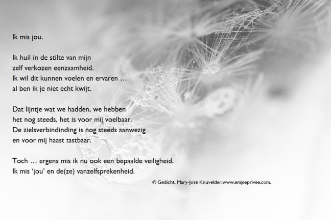 Uitgelezene Gedicht: Ik mis jou – EmJeePrivee MA-25