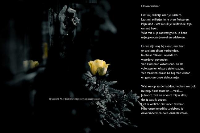 Gedicht Onaantastbaar Emjeeprivee