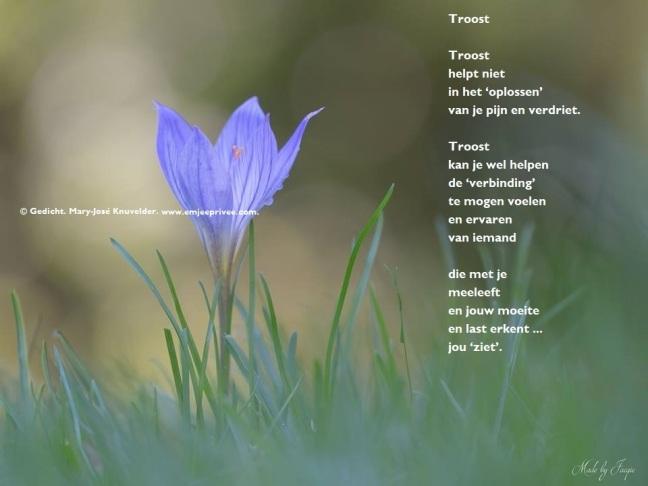 Uitgelezene Gedicht: troost – EmJeePrivee XE-02