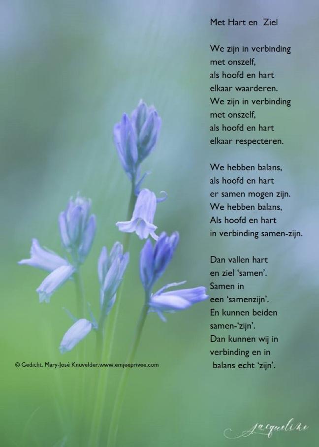 Gedicht Met Hart En Ziel Emjeeprivee